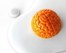 腦啡的來源